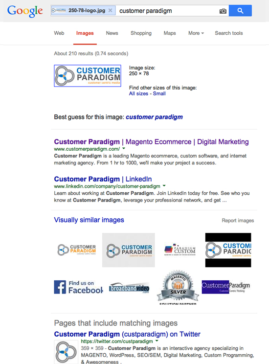 What Google Found when I uploaded my Customer Paradigm Logo