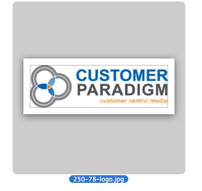 Customer Paradigm Logo on Laptop