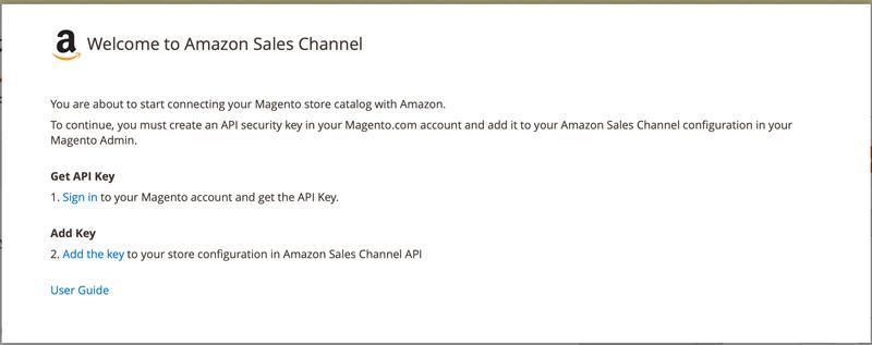 Amazon Sales Channel - Get API key