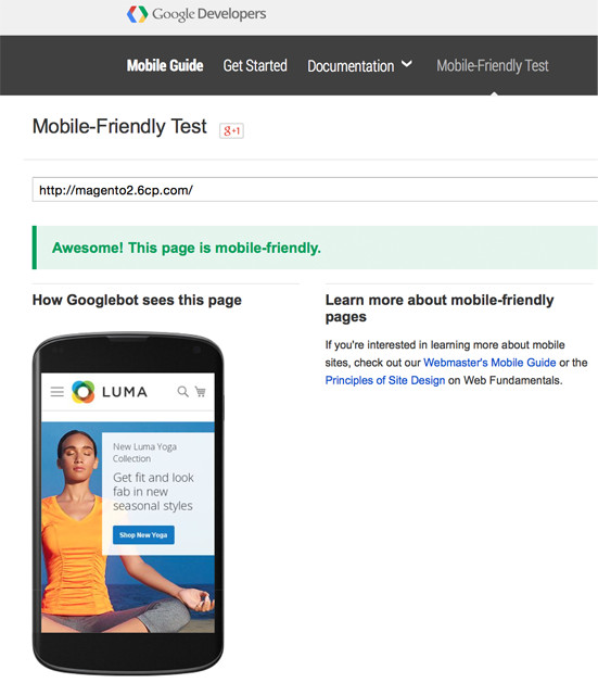 Magento 2.0 - Passes Google Mobile Friendly Test