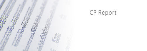 Customer Paradigm - CP Report - Image