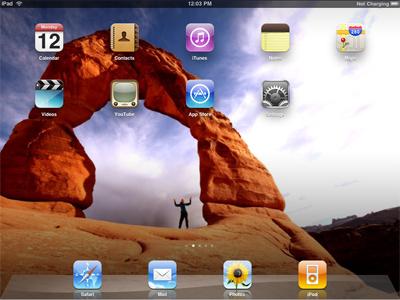 iPad Application Development by Customer Paradigm