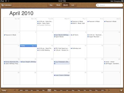 iPad - iCalendar screenshot