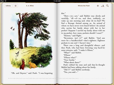 iPad - iBook viewer