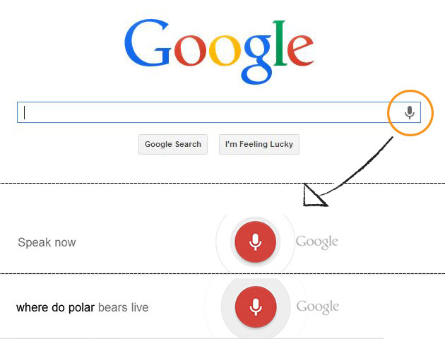 Google Voice Search Colorado SEO