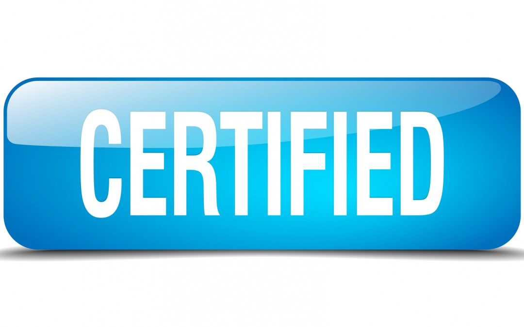 Another Magento Certified Developer on the Customer Paradigm team