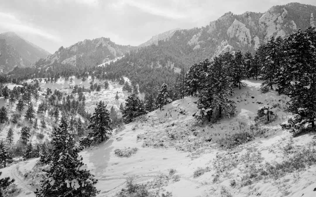 Boulder, Colorado in the snow…
