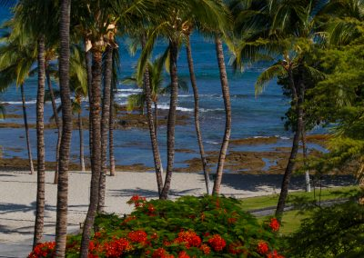 2048-Day-Six-Hawaii-6097