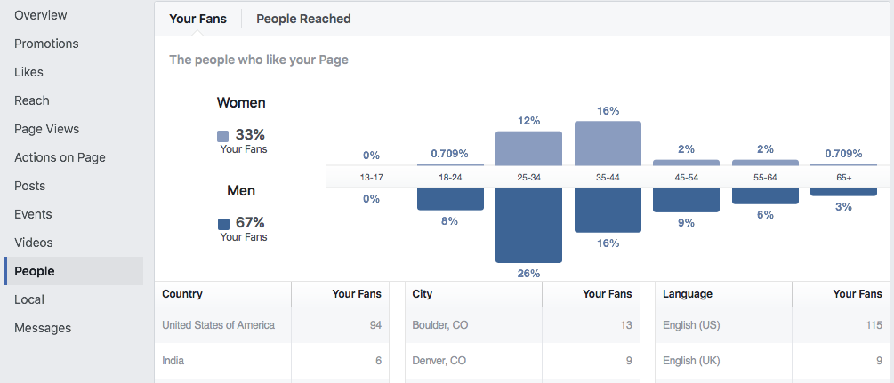 Sample Facebook Business Page Insights