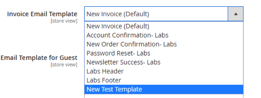 Email Template Invoice Dropdown Options