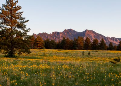 Customer Paradigm Photography - Boulder, Colorado  - Flatirons Vista Trail