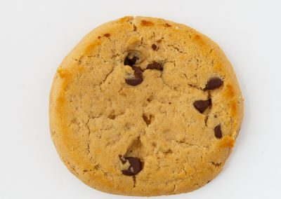 600-concept-chocolate-chip-cookie-on-white-background