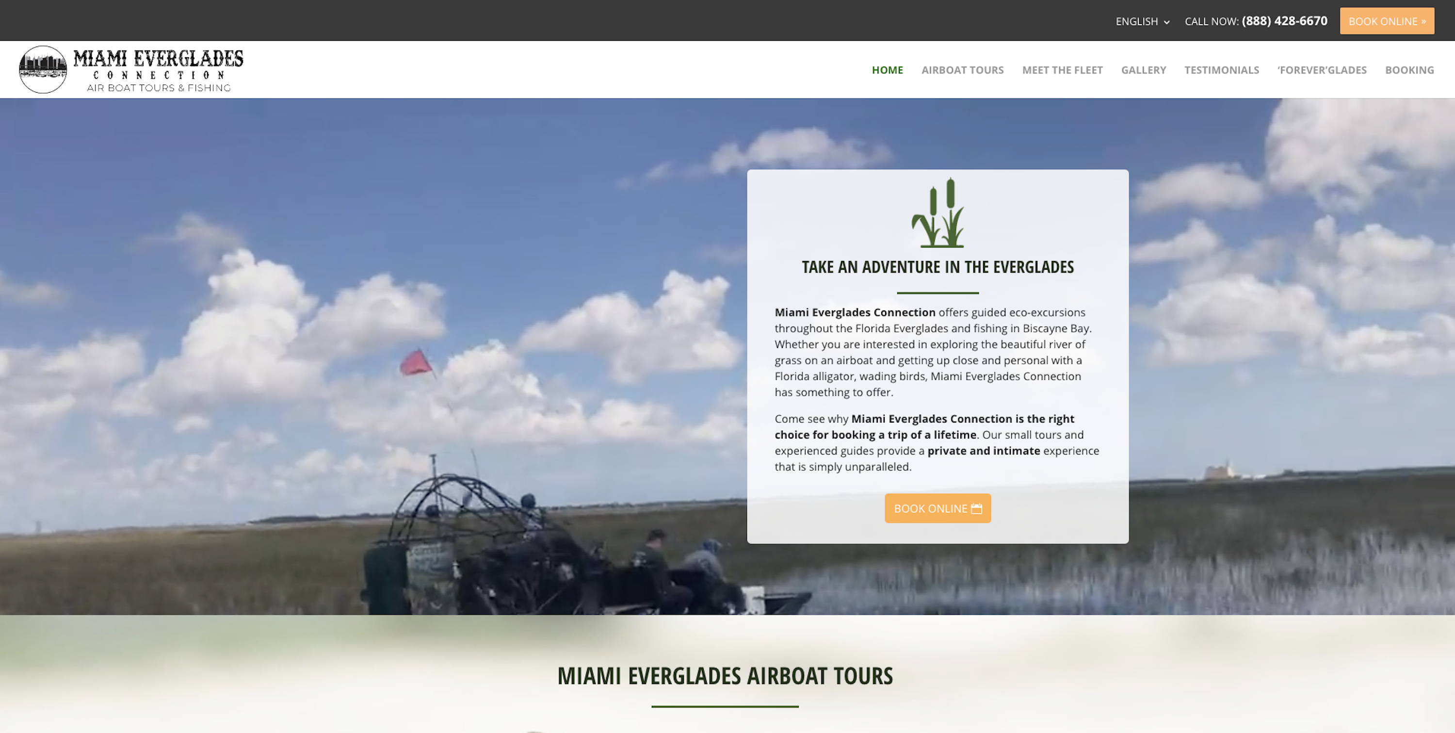 After Miami Everglades Connection Homepage